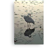 Crane 3 Canvas Print