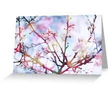 Bokeh Blossom #2 Greeting Card