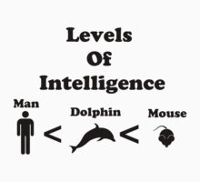 Levels of Intelligence by Rachel Miller