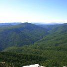 Linville Gorge by Annlynn Ward
