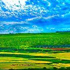 My Valley ! by Neophytos