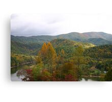 Elk River View Canvas Print