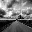 Brackley by Luke Stevens