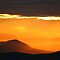 Color Me A Rainbow-Orange Challenge For Feature Banners Dated 6/14/11 only!