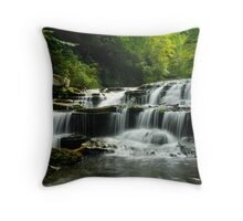 Lower Busby Falls  Throw Pillow