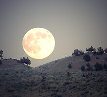 Sagebrush Moon by BettyEDuncan