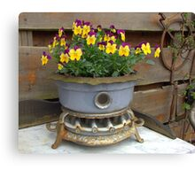 Violets in an old oil stove. Canvas Print