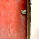 Red Door by Ritva Ikonen