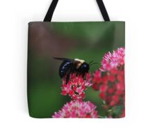 Bumblebee Resting on Autumn Joy Tote Bag