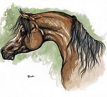 The bay arabian horse portrait by tarantella