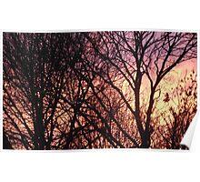 Surrey Sunset Poster