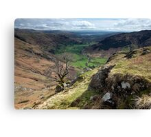 Great Langdale Canvas Print