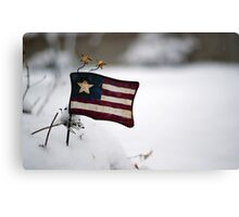 White, red & blue Canvas Print