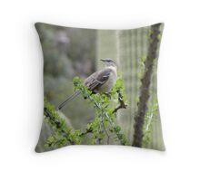 Mockingbird in Ocotillo Throw Pillow