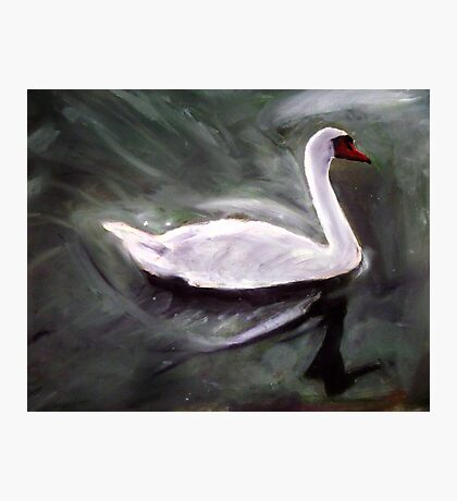 White Swan Oil Painting Photographic Print