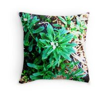 A Neutral in Nature Throw Pillow