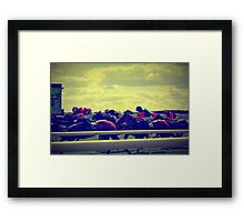 The Curragh Framed Print