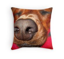 Doxie Nose....Larger than life Throw Pillow