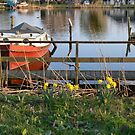 spring dock by LisaBeth
