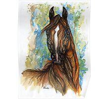 bay arabian horse portrait Poster