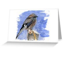 it is freezing cold today Greeting Card