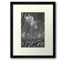 burlington bike trail Framed Print