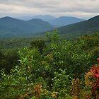 Autumn Begins by Sara Bawtinheimer