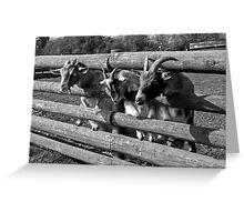 Three Goats Greeting Card