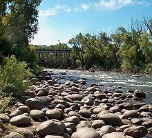 Stony Creek in Colorado by debkauble
