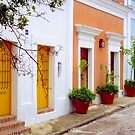 Old San Juan Street, Puerto Rico by Alberto  DeJesus