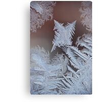 frost 4 Canvas Print