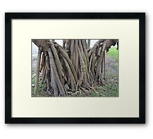 Rooted Network Framed Print