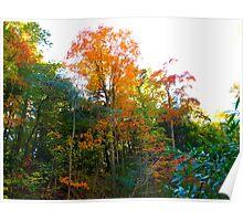 Fall Display Poster