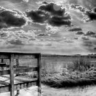 Southampton, Long Island by laurie13