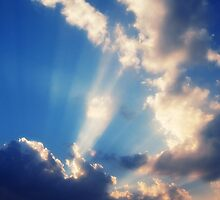 Rays by ruthgeorge