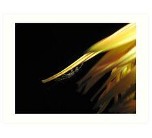 Wasp On Orange Flower Art Print