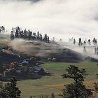 Fog on the Ranch by KansasA