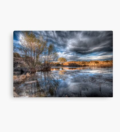 Hank the Picture Canvas Print