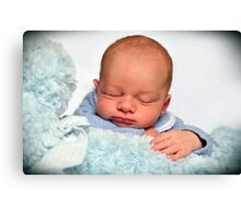 Baby Jake Canvas Print