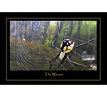 The Weaver Photographic Print