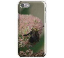 Bumble Bee Bliss iPhone Case/Skin