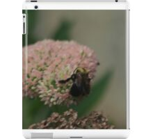 Bumble Bee Bliss iPad Case/Skin