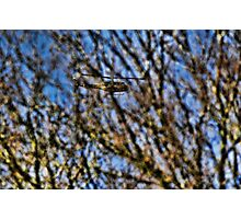 Huey behind the trees Photographic Print