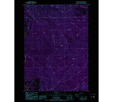 USGS Topo Map Oregon Yellow Butte 282158 1987 24000 Inverted Photographic Print