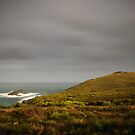 Ray of Sunshine, Cape Bruny by NickMonk