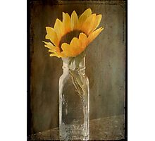 Beauty in a bottle ©  Photographic Print