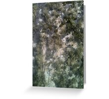 Lichen detail from standing stone Valentia Island Greeting Card