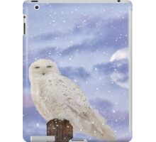 Winter solstice iPad Case/Skin