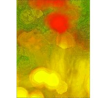 Abstract Garden Photographic Print