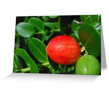 Red Fruit Greeting Card